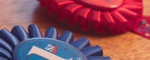 Нижнекамские школьницы стали призерами олимпиады по 3D-технологиям