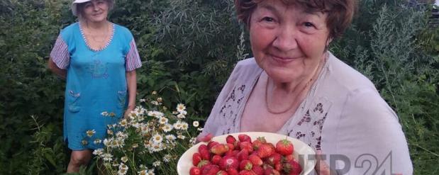 В Нижнекамске пропала 76-летняя учительница русского языка