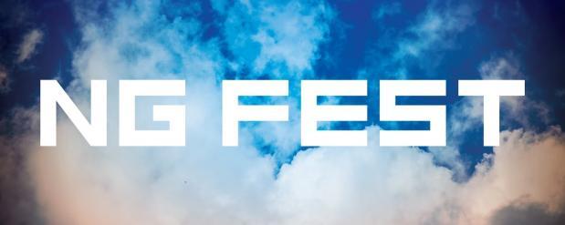 В Нижнекамске прошел «NG FEST»