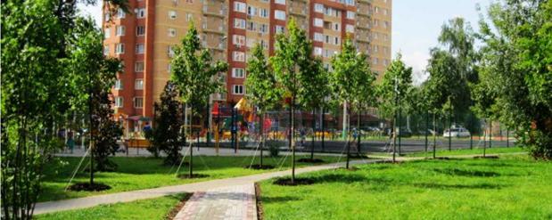 Масштабная реконструкция и благоустройство сельского поселения